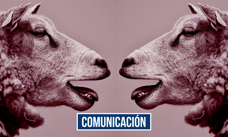 Agencia de comunicación BkMoving
